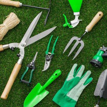 cuidados com jardim